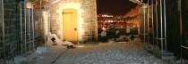 Bal des neiges